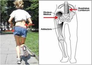 dolor de cadera al correr - ISAF