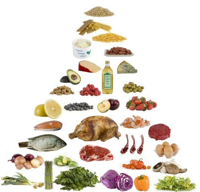 Dieta paleolitica - ISAF