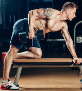 Cursos deportivos de entrenamiento musculación - ISAF