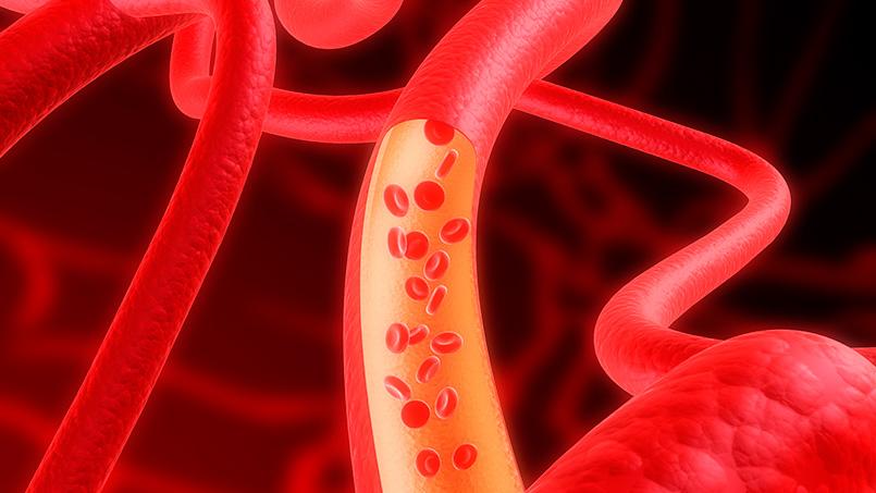 metabolismo del lactato recuperacion deportiva - isaf